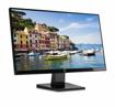 HP Monitor 23.5 - N246V